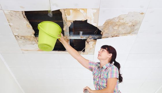 What to Expect from a Water Damage Restoration Company