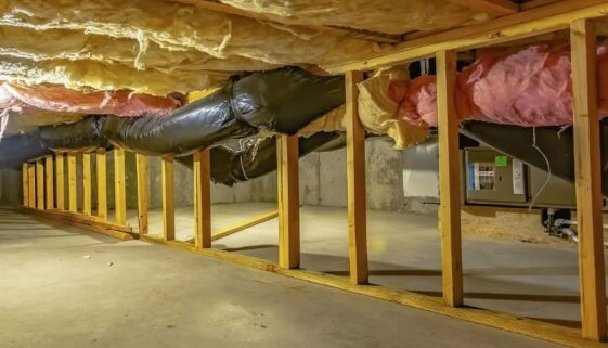 how to remove mold from crawl spaces